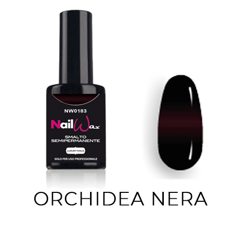 NW0183 – Back in Time – Orchidea Nera